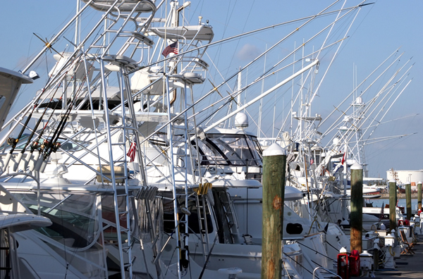 Los Suenos top sport fishing boats