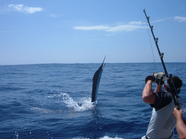los suenos fishing trip