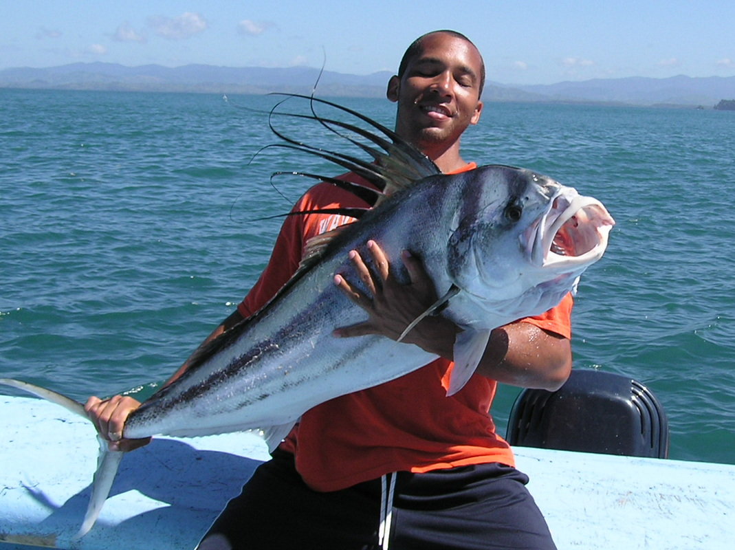roosterfish in los suenos costa rica