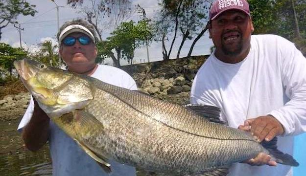 world record fishing los suenos costa rica