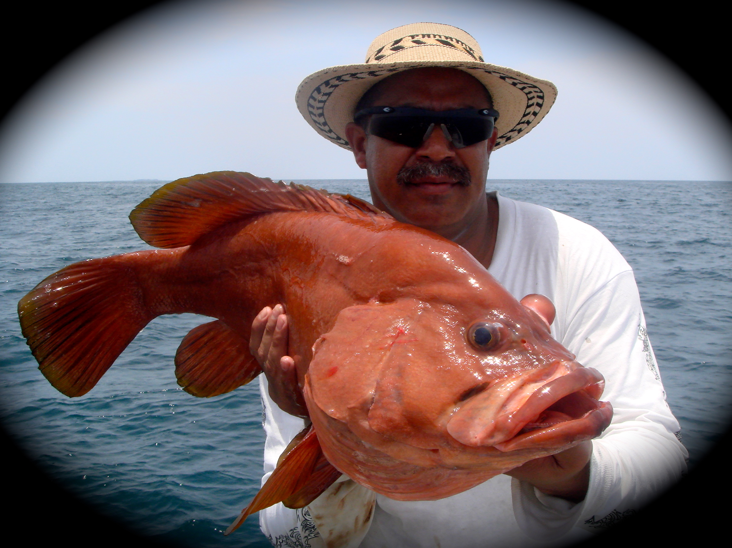 los suenos fishing report
