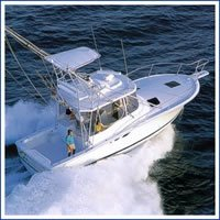 dream i los suenos costa rica fishing
